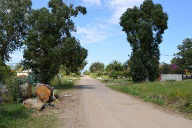 Alquiler Temporal  Maldonado Punta Fría
