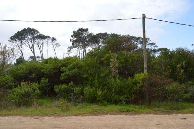 Venta  Maldonado Punta Ballena